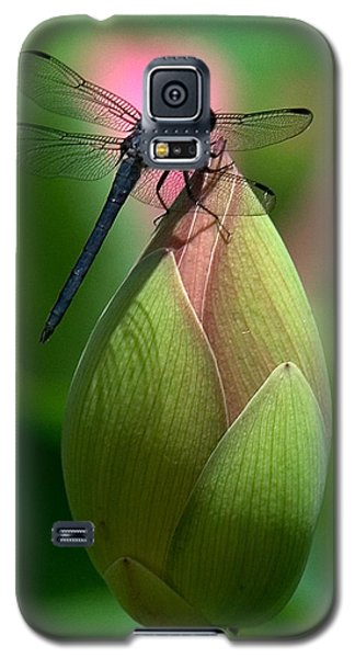 Lotus Bud And Slatey Skimmer Dragonfly Dl006 Galaxy S5 Case