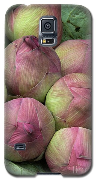 Lotus Buds Galaxy S5 Case