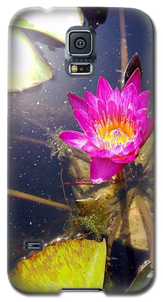 Lotus Day Galaxy S5 Case