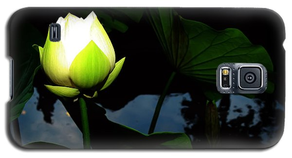 Galaxy S5 Case featuring the photograph Lotus Flower 2 by Kara  Stewart