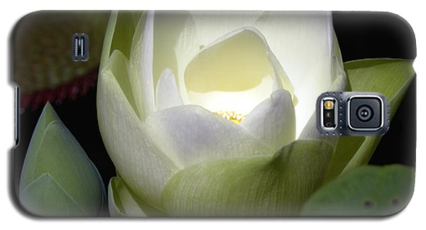 Lotus Flower In White Galaxy S5 Case