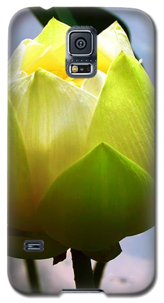 Galaxy S5 Case featuring the photograph Lotus Flower by Kara  Stewart