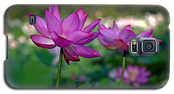 Galaxy S5 Case featuring the photograph Lotus Flowers by Jerry Gammon