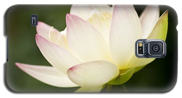 Lotus Glow Galaxy S5 Case