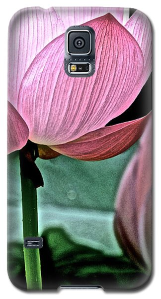 Lotus Heaven - 129 Galaxy S5 Case