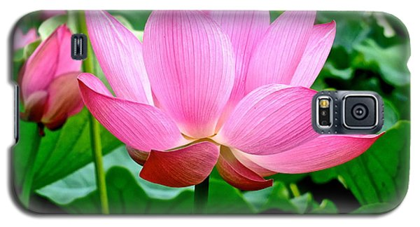 Lotus Heaven - 68 Galaxy S5 Case