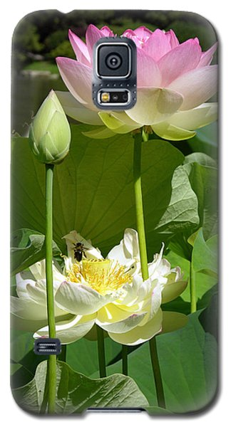 Lotus In Bloom Galaxy S5 Case by John Lautermilch