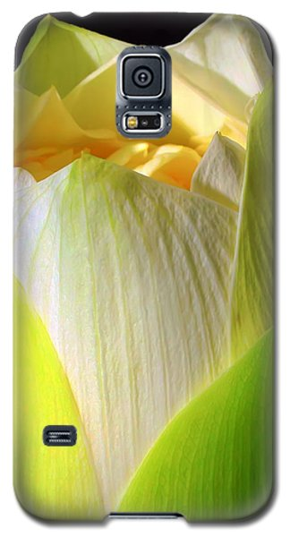 Lotus Galaxy S5 Case by Kara  Stewart