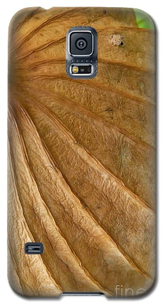 Galaxy S5 Case featuring the photograph Lotus Leaf by Jane Ford