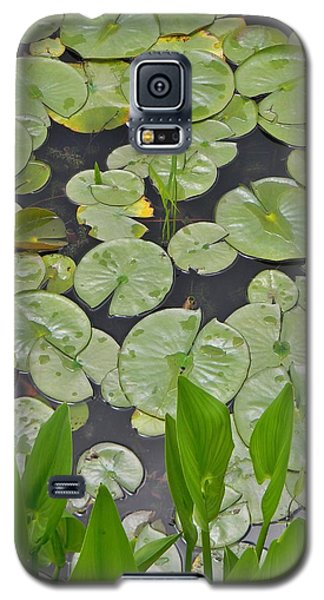 Galaxy S5 Case featuring the photograph Lotus Pads by Jean Goodwin Brooks