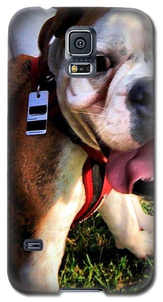 Galaxy S5 Case featuring the photograph Loubird by Robert McCubbin