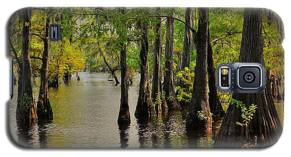 Louisiana Cypress Swamp Galaxy S5 Case by Ester  Rogers