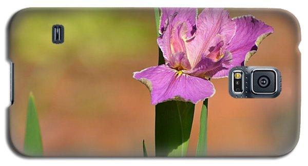 Louisiana Iris Galaxy S5 Case by Jodi Terracina