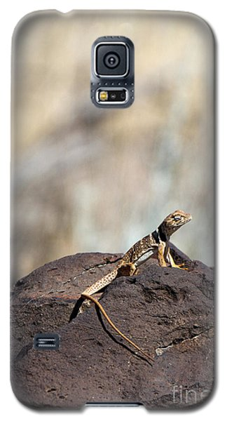 Lounging Lizard Galaxy S5 Case