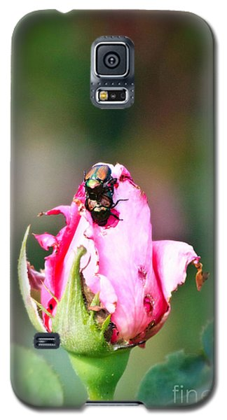 Love Bugs Galaxy S5 Case