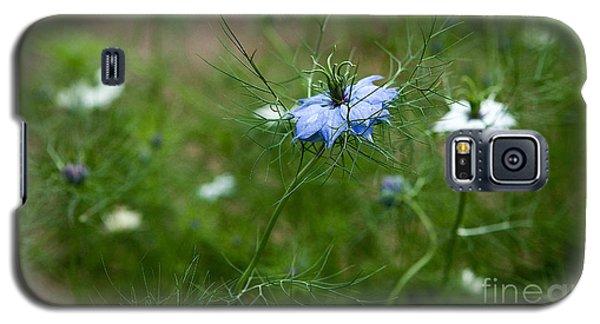 Galaxy S5 Case featuring the photograph Love In A Mist by Liz  Alderdice