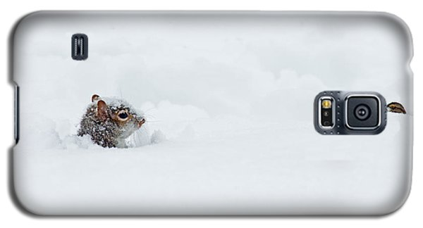 Love Is Snowblind Galaxy S5 Case