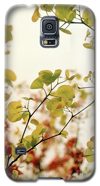 Galaxy S5 Case featuring the photograph Love Leaf by Rebecca Harman