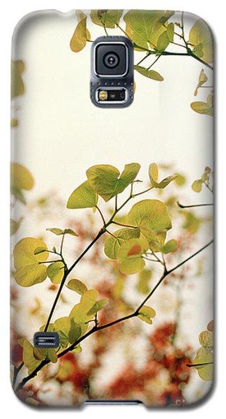 Love Leaf Galaxy S5 Case by Rebecca Harman