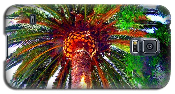 Galaxy S5 Case featuring the photograph Love Under The Palm In San Diego by Angela Annas
