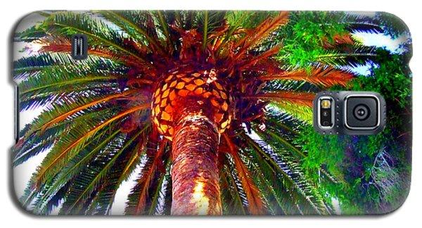 Love Under The Palm In San Diego Galaxy S5 Case
