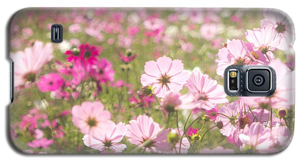 Lovely Backlit Pink And Fuchsia Cosmos Flower Field Galaxy S5 Case