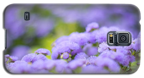 Lovely Blue Mink With Lavender Tones In Soft Focus Galaxy S5 Case