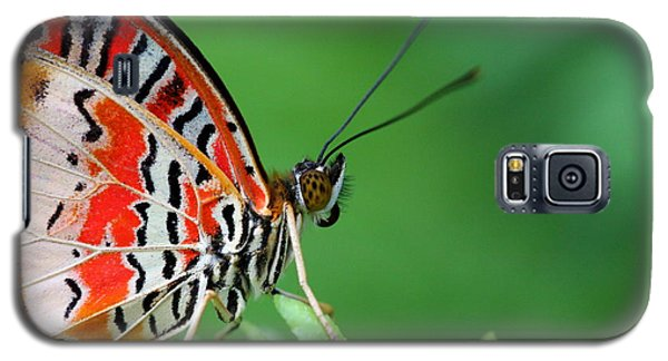 Galaxy S5 Case featuring the photograph Lovely Lacewing by Ruth Jolly