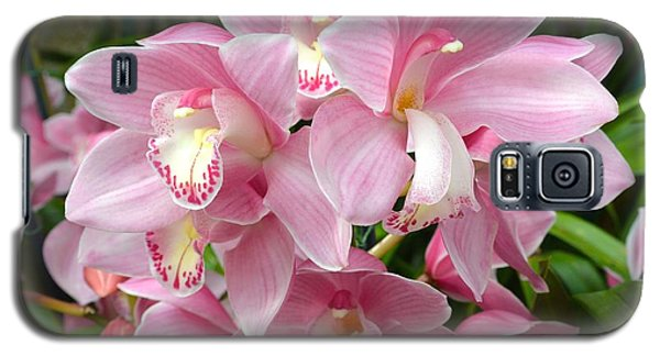 Galaxy S5 Case featuring the photograph Cymbidium Pink Orchids by Jeannie Rhode