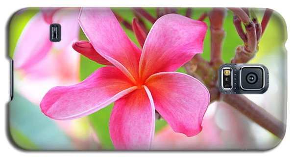 Galaxy S5 Case featuring the photograph Lovely Plumeria by David Lawson