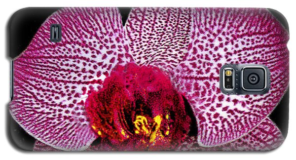 Galaxy S5 Case featuring the photograph Lovely Red Spotted Orchid by Merton Allen