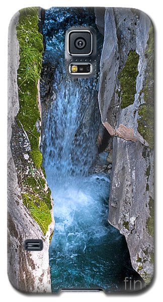 Galaxy S5 Case featuring the photograph Love's Endurance by Sandi Mikuse