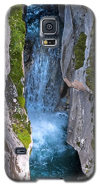 Love's Endurance Galaxy S5 Case by Sandi Mikuse