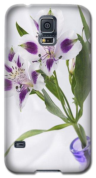 Loving Purple Galaxy S5 Case