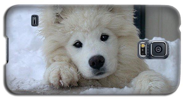 Loving The Snow Galaxy S5 Case