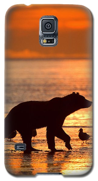 Low Tide Galaxy S5 Case by Aaron Whittemore