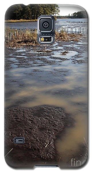 Low Tide At Blackwater Wildlife Refuge In Maryland Galaxy S5 Case