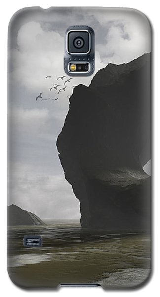 Low Tide Galaxy S5 Case by Cynthia Decker