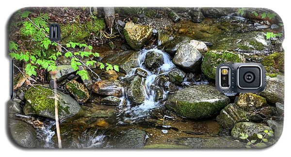 Lowell Mountain Stream Galaxy S5 Case