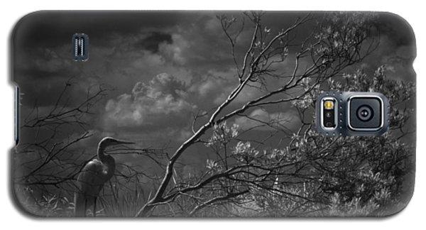 Loxahatchee Heron At Sunset Galaxy S5 Case