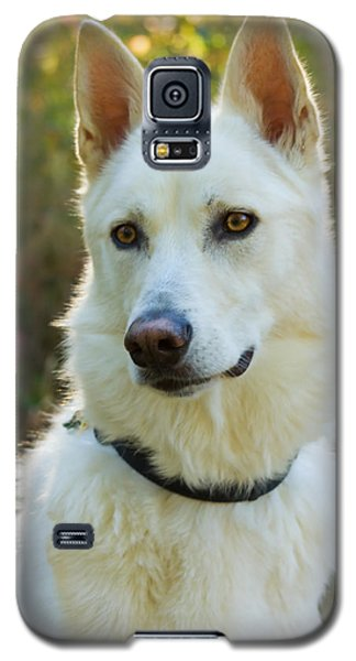 Loyal Beauty Galaxy S5 Case