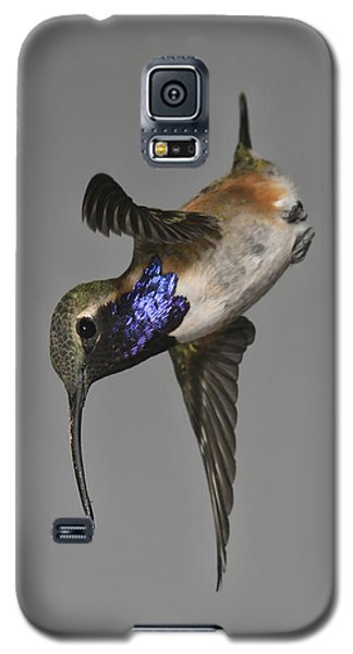 Galaxy S5 Case featuring the photograph Lucifer Hummingbird - Phone Case Design by Gregory Scott