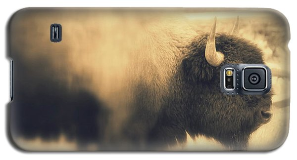 Galaxy S5 Case featuring the photograph Lucky Yellowstone Buffalo by Lynn Sprowl