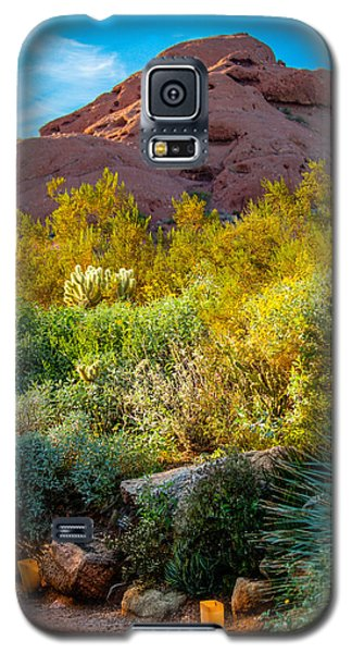 Luminarias In The Afternoon Galaxy S5 Case