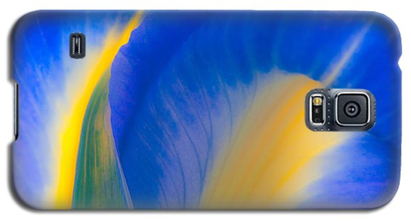 Luminous Galaxy S5 Case by Joan Herwig