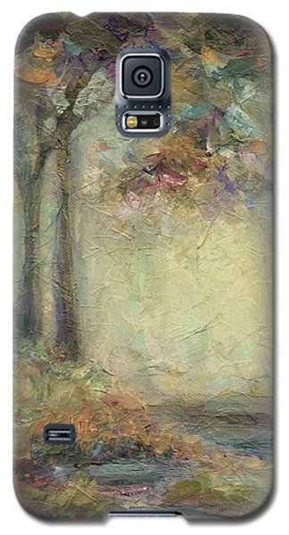 Luminous Landscape Galaxy S5 Case