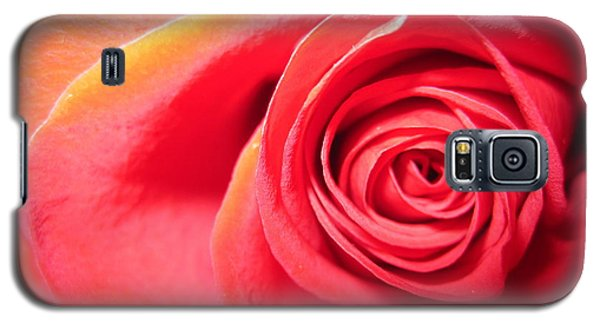 Luminous Red Rose 1 Galaxy S5 Case