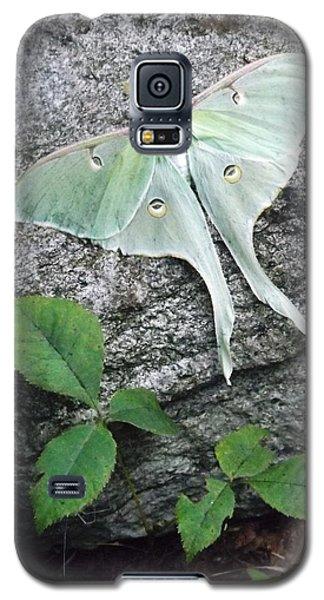 Luner Rock Galaxy S5 Case