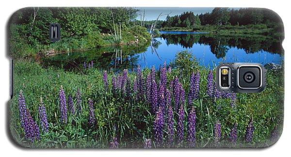 Lupin And Lake Galaxy S5 Case