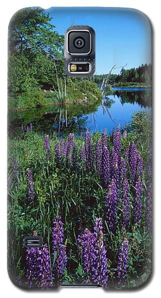 Lupin And Lake-v Galaxy S5 Case